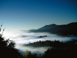 fog-in-valley